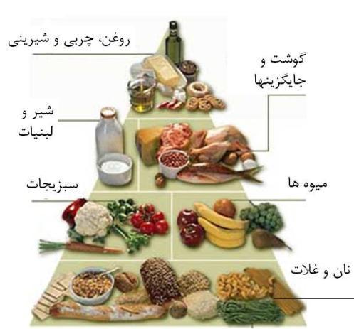 هرم غذایی