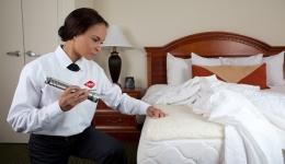 مبارزه با حشرات در هتل ها