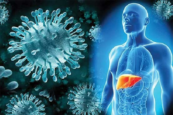 hepatit-بیماری هپاتیت