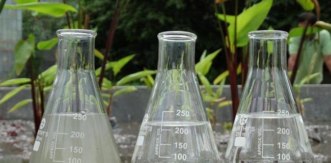 بررسی مدیریت محیط زیستی آلودگی کادمیوم با کاربرد روش گیاه پالایی