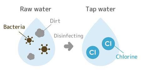 گندزدایی (Disinfection)
