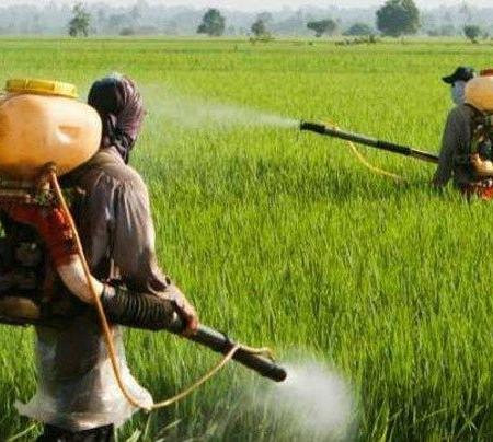 آیین نامه حفاظت فنی و بهداشت در کار کشاورزی