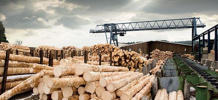 آیین نامه حفاظتی صنایع چوب