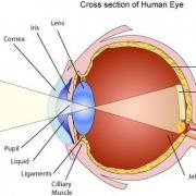 بینایی و روشنایی