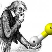 ایمنی گاز سولفید هیدروژن (H2S)