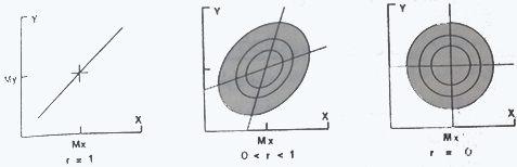 خطوط هم احتمال در توزیع طبیعی دو گانه که دارای درجات مختلف همبستگی هستند.Mx,My مقادیر میانگین متغیرهای x و y می باشند