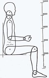 مدل انسان نما, زنی با صدک پنجم (مقیاس 0.1)