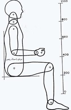 مدل انسان نما, مردی با صدک پنجم (مقیاس 0.1)
