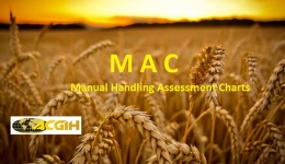 ارزیابی پوسچر به روش MAC