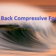 Utah Back Compressive Force