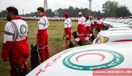 مدیریت و سازماندهی امداد و نجات