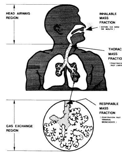 ورود گرد و غبار به ریه ها