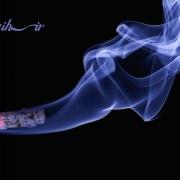 بررسی سیگار در سمیت مواد