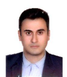 مهندس مهدی محمدیان