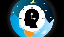 خواب و تغییرات دوره ای سیرکادین