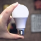 ایمنی پرتوی زیستی لامپ ها و سامانه های لامپ ها