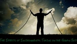 تاثیر عوامل شیمیایی و سموم بر سلامت انسان و محیط زیست