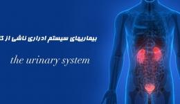 بیماریهای سیستم ادراری ناشی از کار