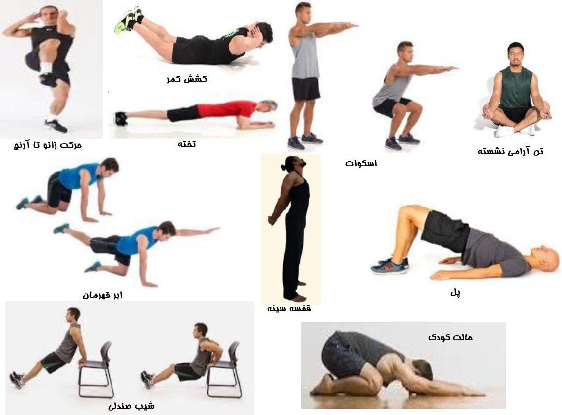 نمونه ای از تمرینات ورزشی مناسب برای دوران دورکاری