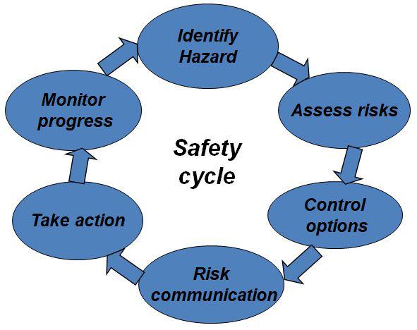 چرخه ایمنی