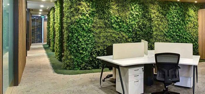 طراحی بیوفیلیکی در محیط های کاری، سلامتی و بهره وری