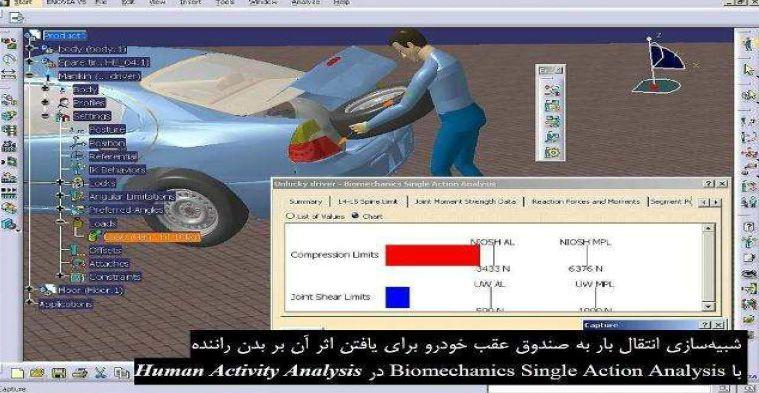 Human Posture Analysis