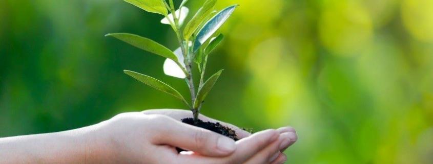 لیست مجلات بهداشت محیط و محیط زیست و HSE
