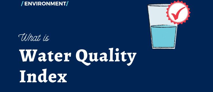 بررسی شاخص کیفیت آب (WQI) و ارزیابی ریسک بهداشتی نیترات و فلوراید در آب و چای مصرفی